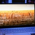 Layar Acer Swift 3 Infinity 4
